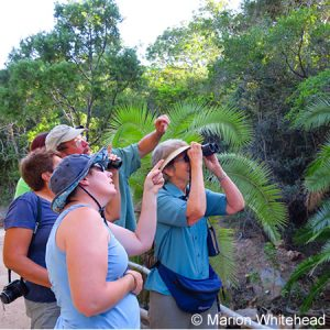 A birding exp3erience with our local guide