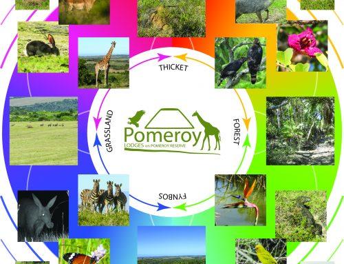 Pomeroy Reserve Diversity