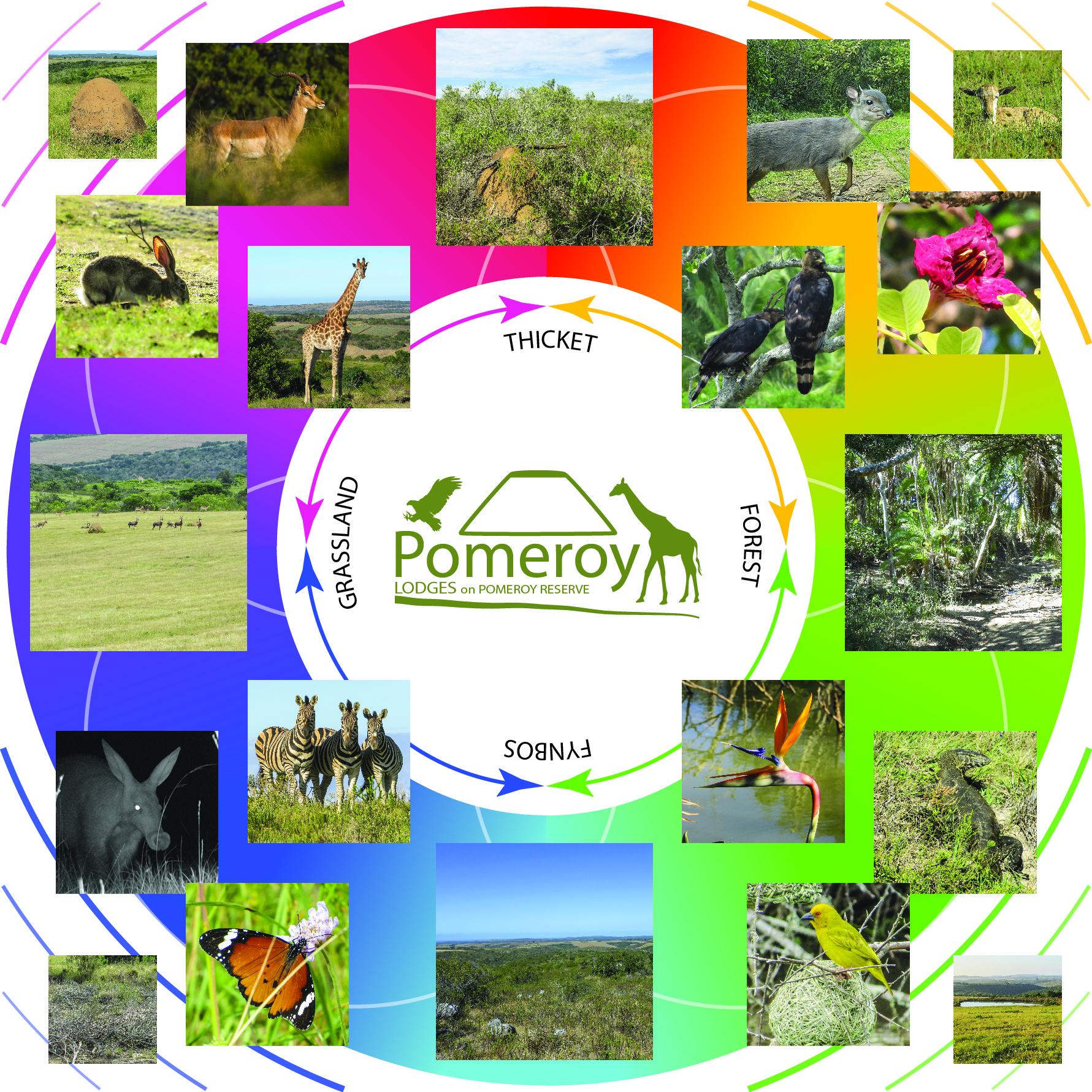 Pomeroy Reserve Bio-Diversity